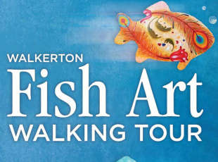Fish Art Tour
