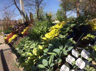 Folmer Landscaping and Garden Centre