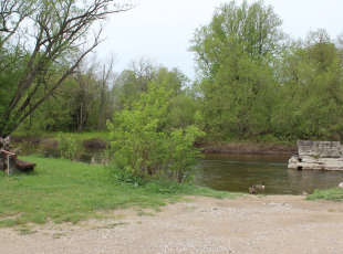 Saugeen River Access #03